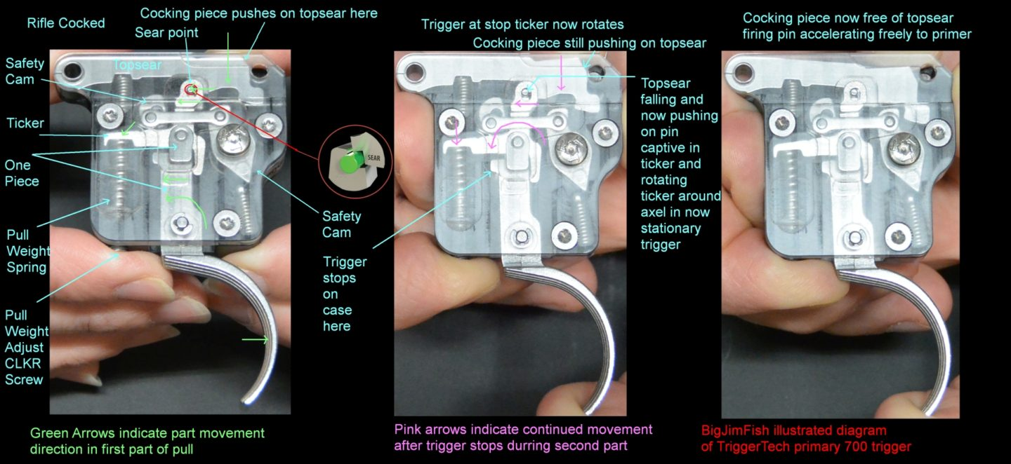 Illustrated diagram of the two part release sequence of a TriggerTech trigger.