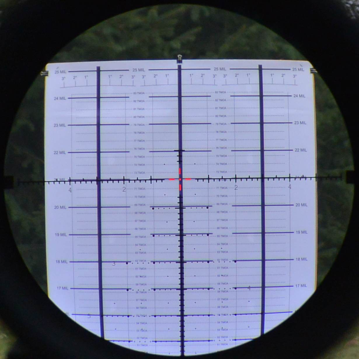 ILya's MRAD RD Reticle in the Meopta Optika6 5-30x56 RD FFP scope on the HORUS CATS target at 30x