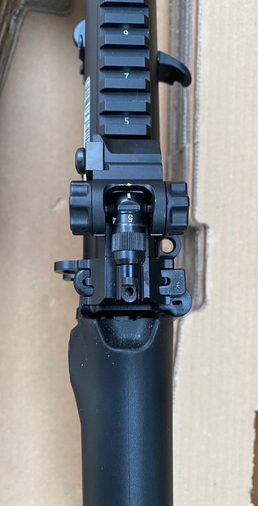 16s- rear sight.jpg