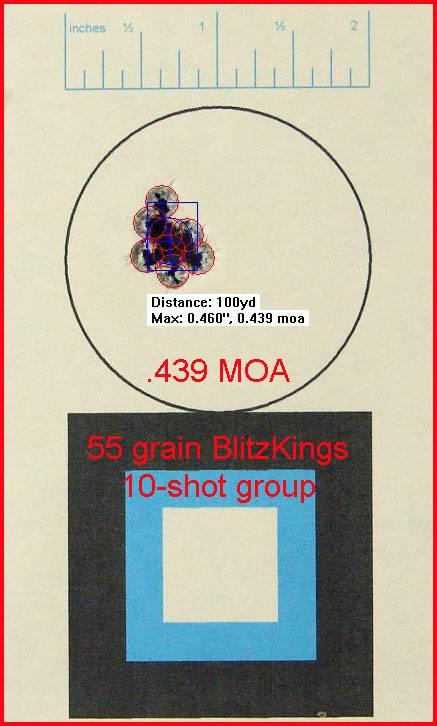 55_grain_blitzkings_10_shot_group_at_100-.jpg