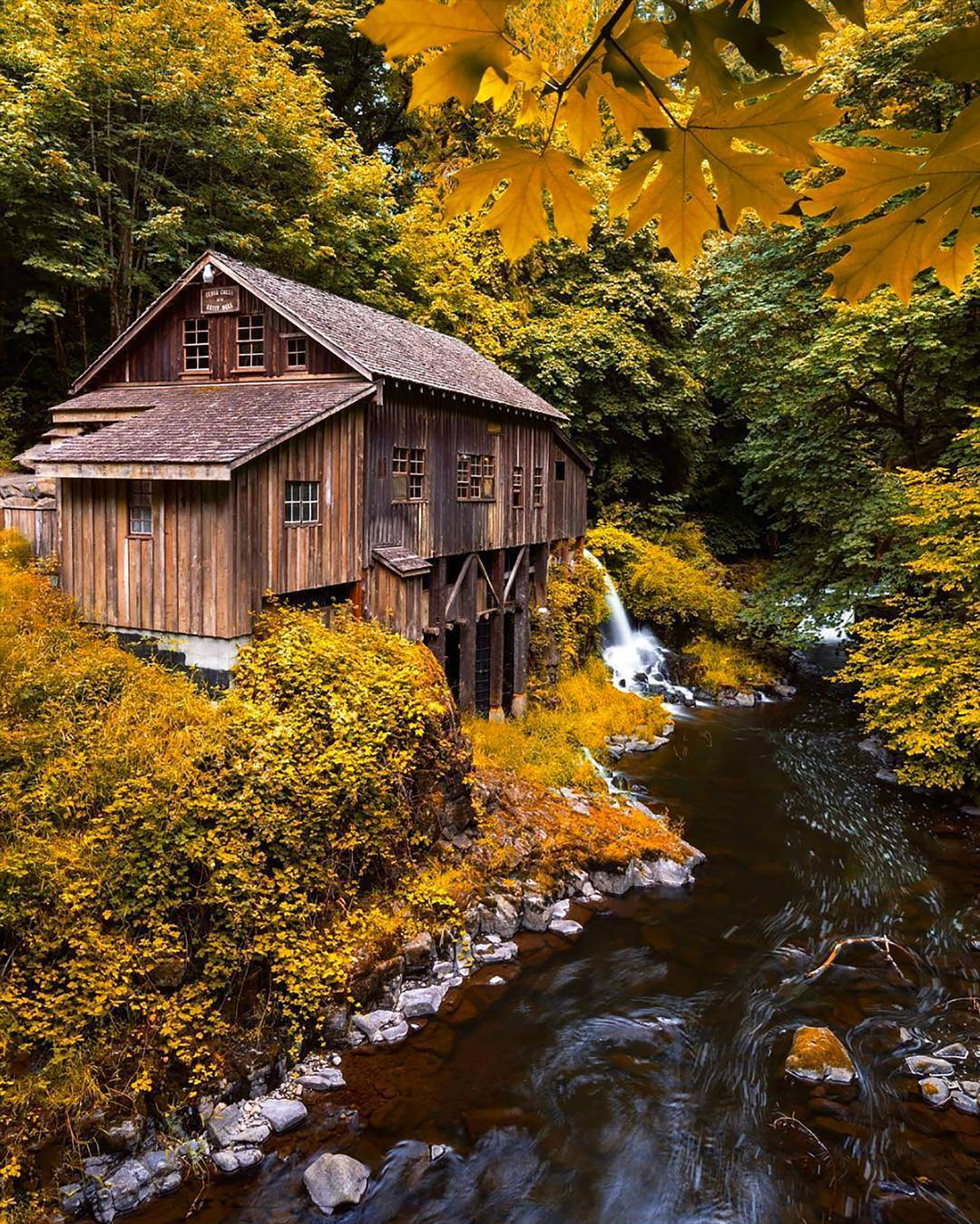 mill stream.jpeg