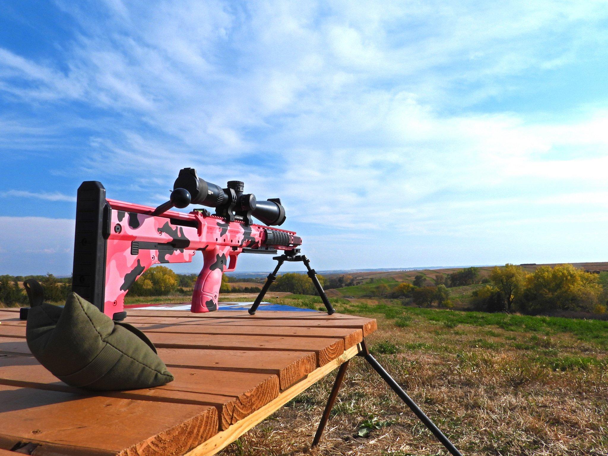 Pink DT.jpg
