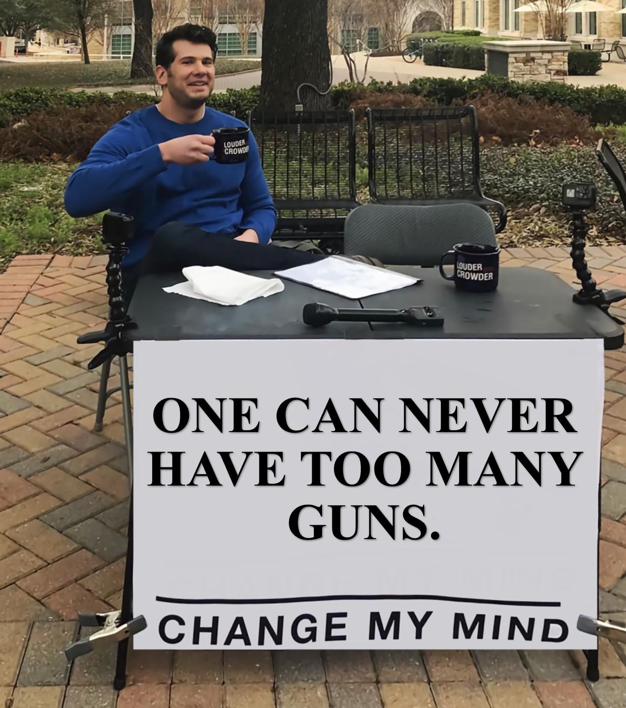 Too Many Guns Change My Mind.jpg