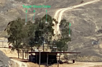 trees1-4-tragets-Shoot-order.png