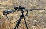 Elk gun.jpg