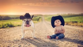 boy dog.jpg