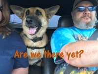Are we there yet.jpg