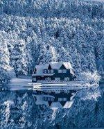 cabin reflect.jpeg