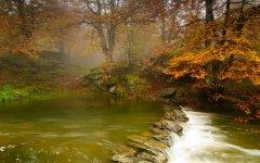198547-nature-landscape-river-forest-trees-stones.jpg