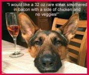 dog steak.jpg