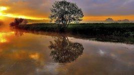 river reflect.jpeg