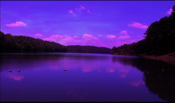purple sky.png