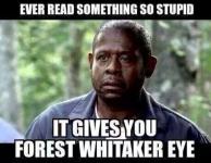 Stupid.PNG