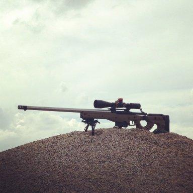 WTT for large caliber hunting rifle | Sniper's Hide Forum