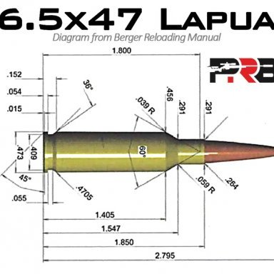 Does Anyone Have Experience with the PVA Jet Blast Muzzle
